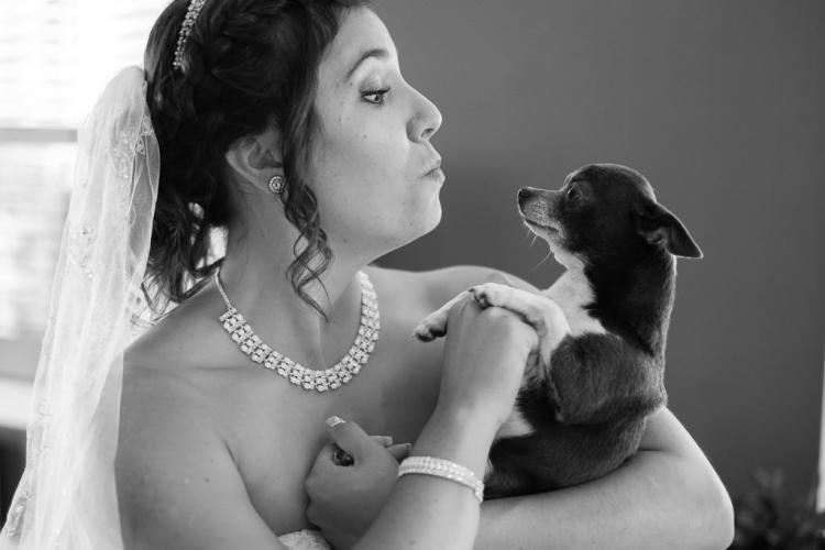 préparation de la mariée avant son mariage avec son chien