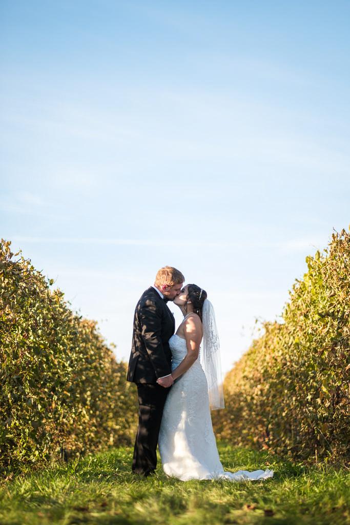 photographe de mariage professionnel photo prise dans un vignoble à st-eustache dans les laurentides sur la rive-nord de montréal