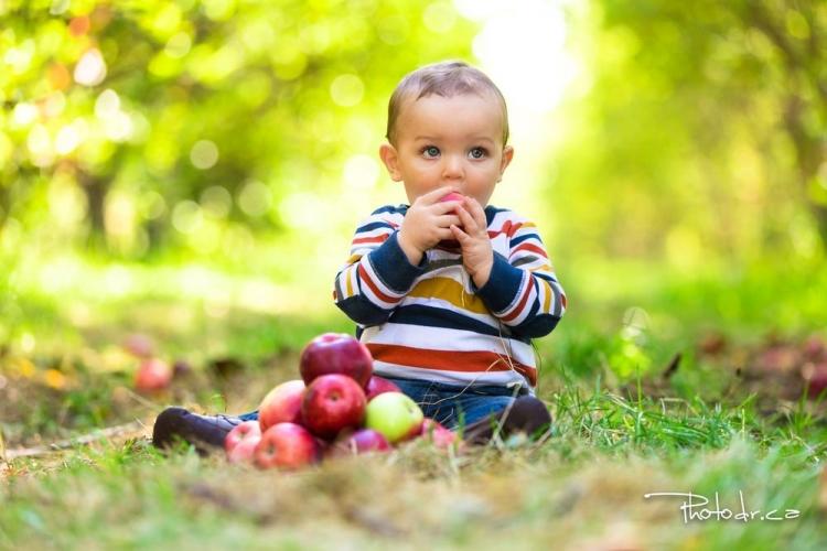 photographe de portait extérieur session maternité famille impression photoshoot shooting photo st-eustache fille couple verger pomme